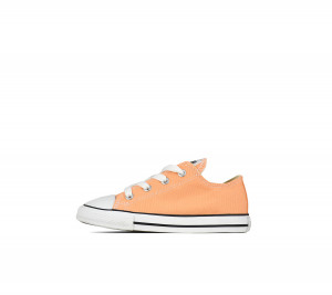 736819 CONVERSE LOW